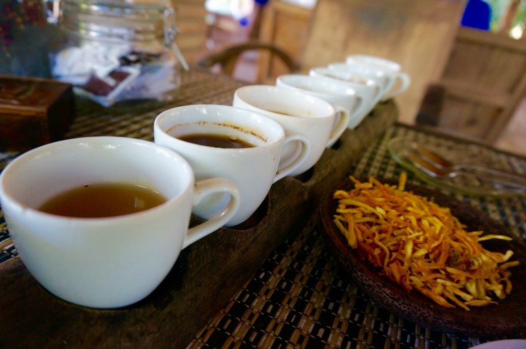tara moss photography ladyhattan luxury travel blog bali indonesia luwak coffee