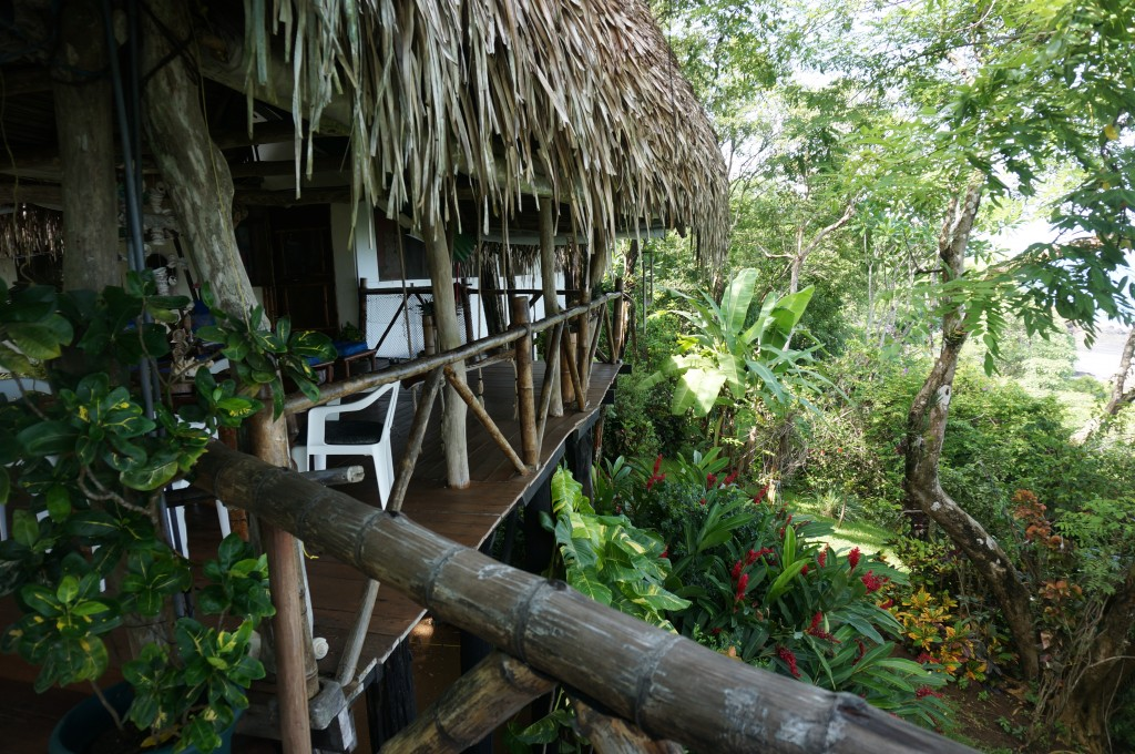 Costa Rica – Lady in the Trees – Life in the Jungle