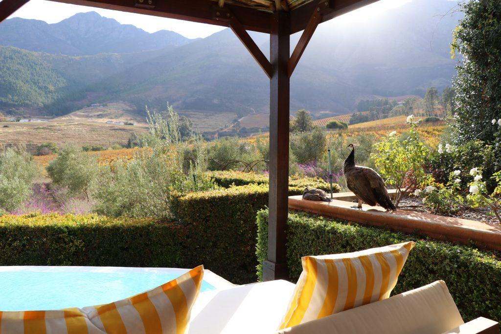 Franschhoek, South Africa – Insider Guide on La Residence